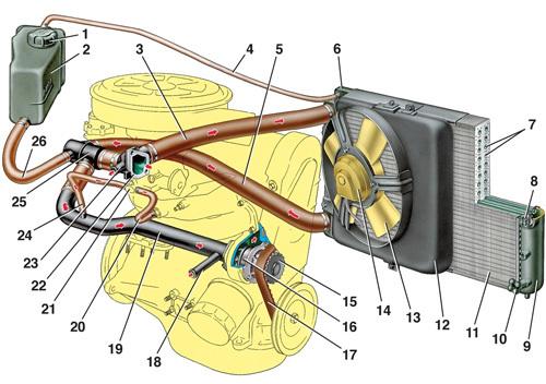 Схема системы охлаждения ВАЗ-2115 инжектор: фото