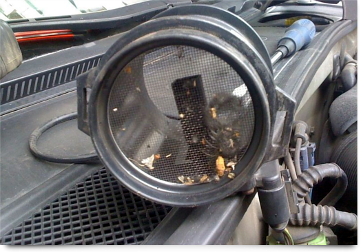 Расход воздуха на холостом ходу ВАЗ 2114: показатели